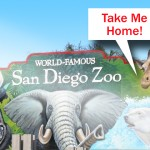 I Want to Buy the San Diego Zoo and Safari Park